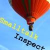 Smalltalk Inspect Logo